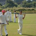 Cricket at Glynde in July